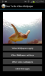 SeaTurtle video wallpaper Free screenshot 5/6