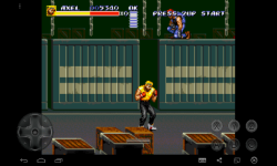 Fighting Fury Street screenshot 3/4