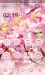 Sakura Theme - Cherry Flower screenshot 4/6