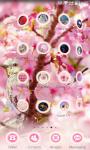 Sakura Theme - Cherry Flower screenshot 6/6