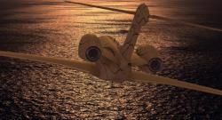 Infinite Flight Simulator professional screenshot 3/6