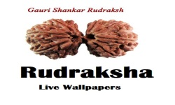 Rudraksha Live Wallpapers screenshot 1/2