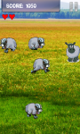 Android Sheep Game / Lamb Game screenshot 1/6