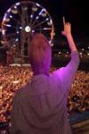 Avicii at Coachella Live Wallpaper screenshot 2/2