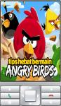 Tips Hebat Bermain Angry Birds screenshot 1/2