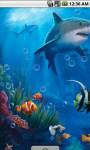 Underwater Scenery Live Wallpaper screenshot 2/4