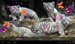 3D Bengal Tiger Live Wallpapers screenshot 5/5