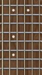 Easy Fake Guitar Virtuoso screenshot 1/2