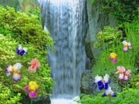 Waterfall best Lives HD wallpaper screenshot 6/6