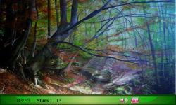 Fantasy Forest screenshot 3/3