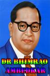 Dr Bhimrao Ambedkar screenshot 1/3