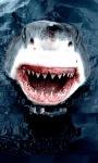 White Shark Live Wallpape screenshot 2/3