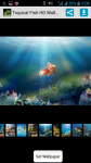 Tropical Fish HD Wallpaper screenshot 1/4