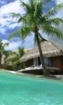 Smartphone in the tropical sea live wallpaper screenshot 1/4
