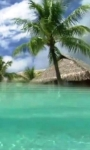 Smartphone in the tropical sea live wallpaper screenshot 3/4