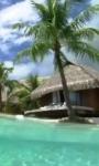 Smartphone in the tropical sea live wallpaper screenshot 4/4