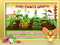 Baby Plants Crops 2 screenshot 1/5