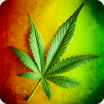 New Rasta HD Wallpapers screenshot 2/6