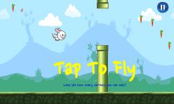 Bunny Flap : Eat The Carrots screenshot 2/6