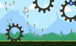 Bunny Flap : Eat The Carrots screenshot 6/6
