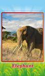 Animal Riddles Sounds and Photos screenshot 5/6