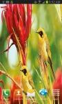 Yellow Birds free screenshot 2/3