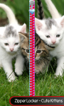 Zipper Locker - Cute Kittens screenshot 1/6