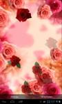 Red Roses screenshot 4/4