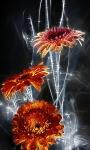 Flowers Glow Live Wallpaper screenshot 3/3
