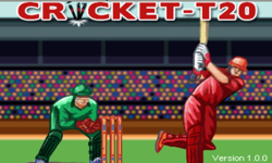 Cricket T20 Symbian screenshot 1/4