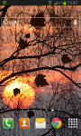 Sunset LWP Free screenshot 2/2