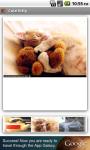 Cute Kitty screenshot 2/3