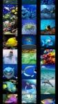Fish Wallpapers screenshot 1/5