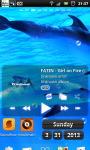 Underwater Swimming Dolphin Live Wallpaper screenshot 3/6