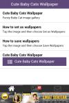 Free Cute Baby Cat Wallpaper screenshot 6/6