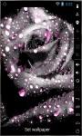 Gorgeous Grey Rose Live Wallpaper screenshot 2/2