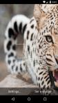 Beautiful Leopard Live Wallpaper HD screenshot 2/6