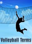 Volleyball Terms screenshot 2/4