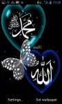 Allah Islamic Butterfly LWP screenshot 1/3