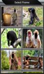 Funny Monkey Photo Montage screenshot 2/6