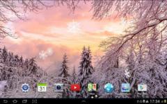 Snowfall Live Wallpaper special screenshot 5/6