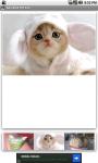 Adorable Pet Zoo screenshot 3/3