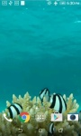 Fish HD Live Wallpaper screenshot 4/4