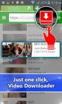 VIDEO Hidden downloader screenshot 1/3