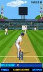 Best Cricket Game pro screenshot 1/6