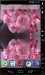 Cherry Blossoms Reflection Live Wallpaper screenshot 1/2