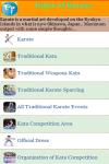 Rules of Karate screenshot 2/3