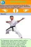 Rules of Karate screenshot 3/3