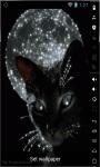 Cat Of The Moon Live Wallpaper screenshot 1/2