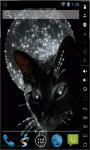 Cat Of The Moon Live Wallpaper screenshot 2/2